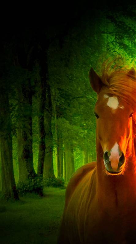 3d Nature And Horse