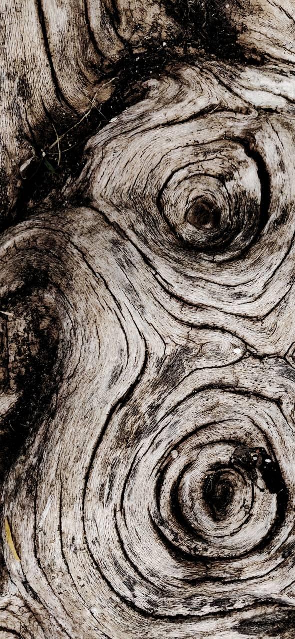 Wood loops