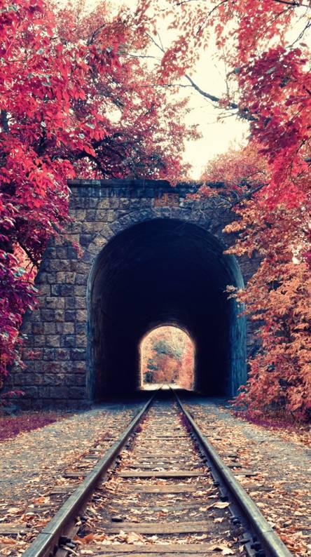 Railway Park
