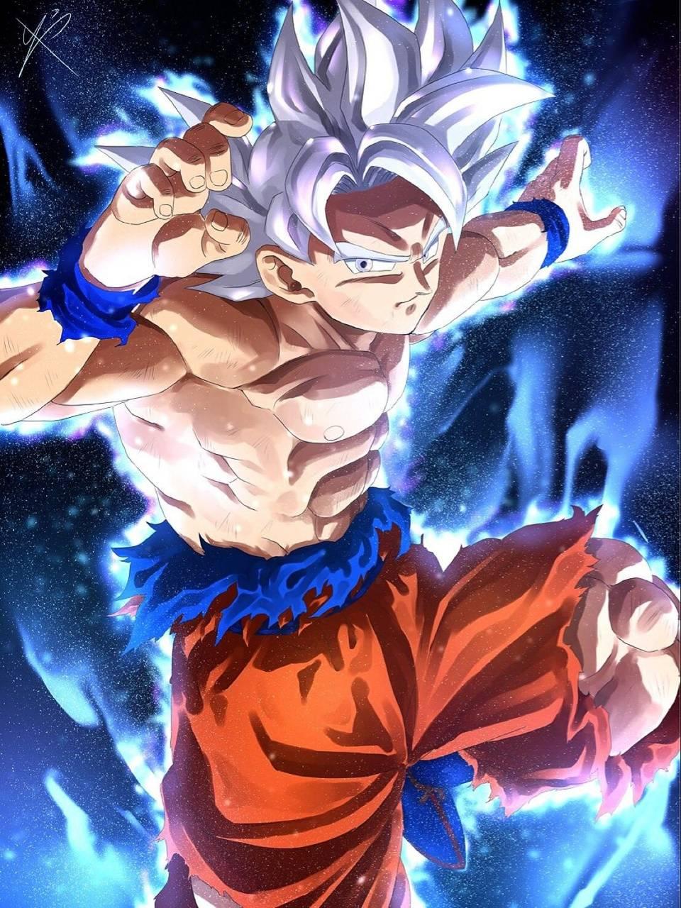 Goku mastered