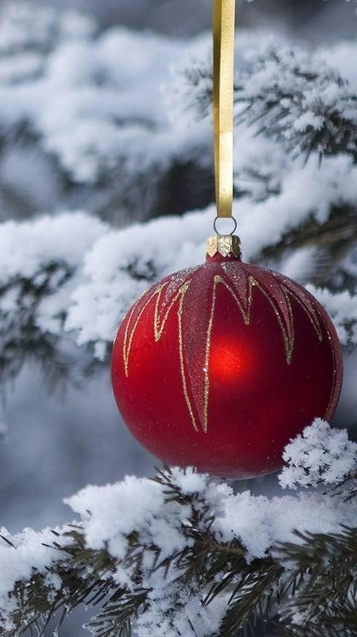 christmas holliday