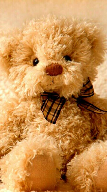 Cute Teddy Bear Wallpapers Free By Zedge