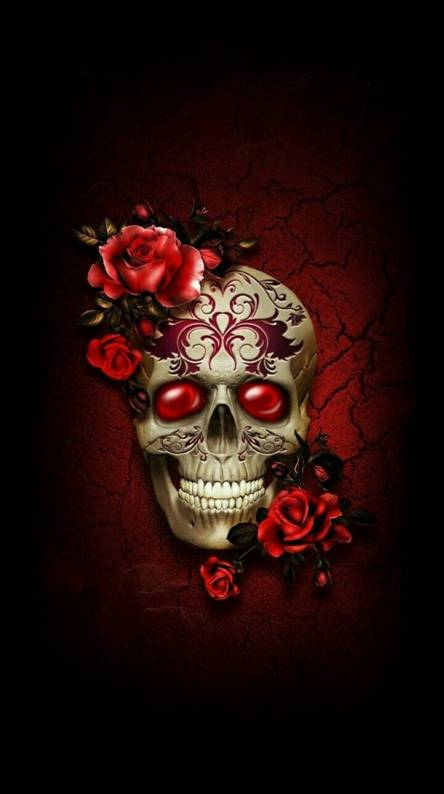 Rose Skull Wallpapers Free By Zedge