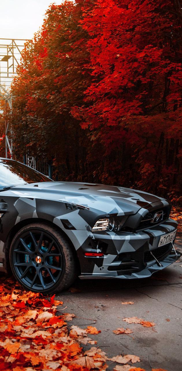 True Car Mustang