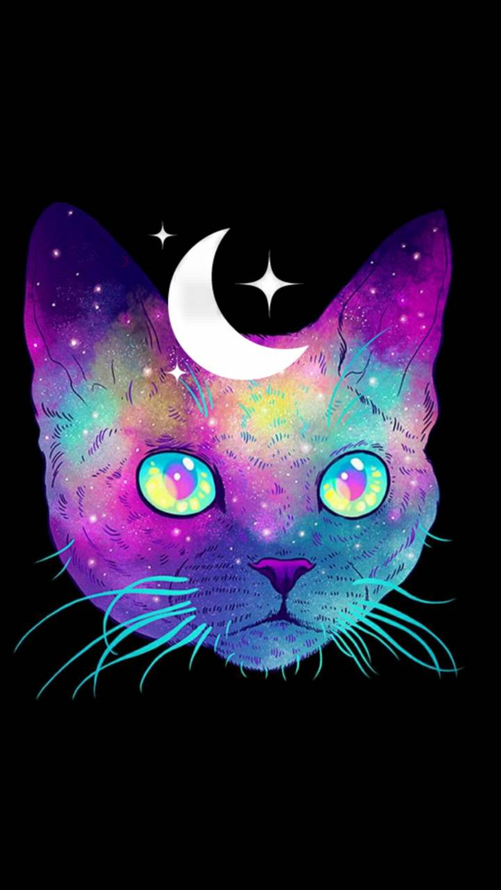 Space Cat Wallpaper By Askingaa Ab Free On Zedge