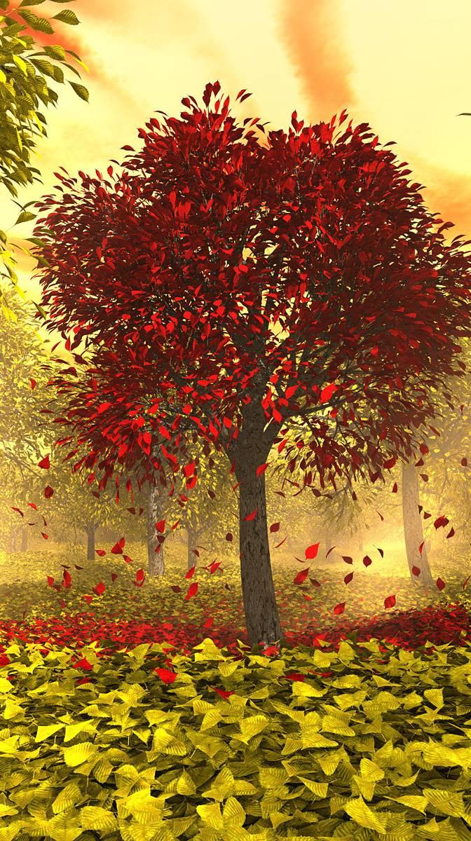 Картинки осень деревья анимация