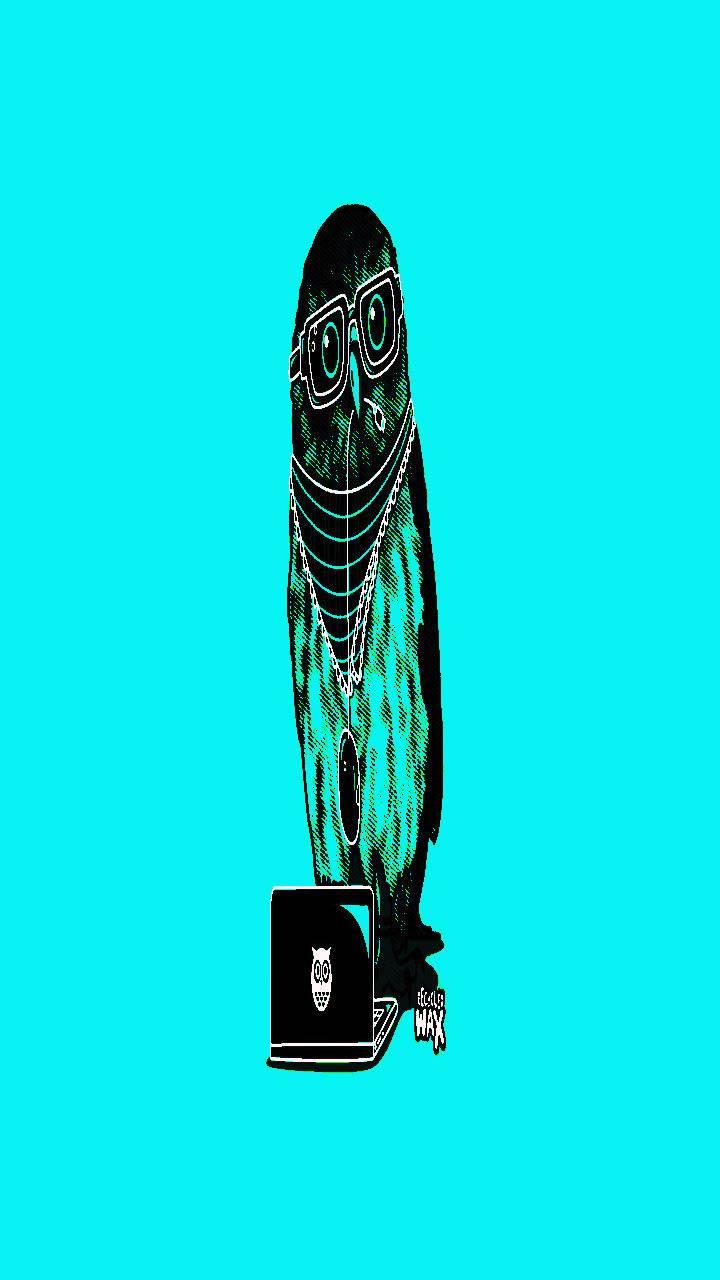 Owl fx design