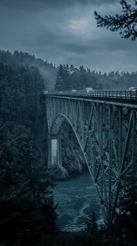 Bridge cars