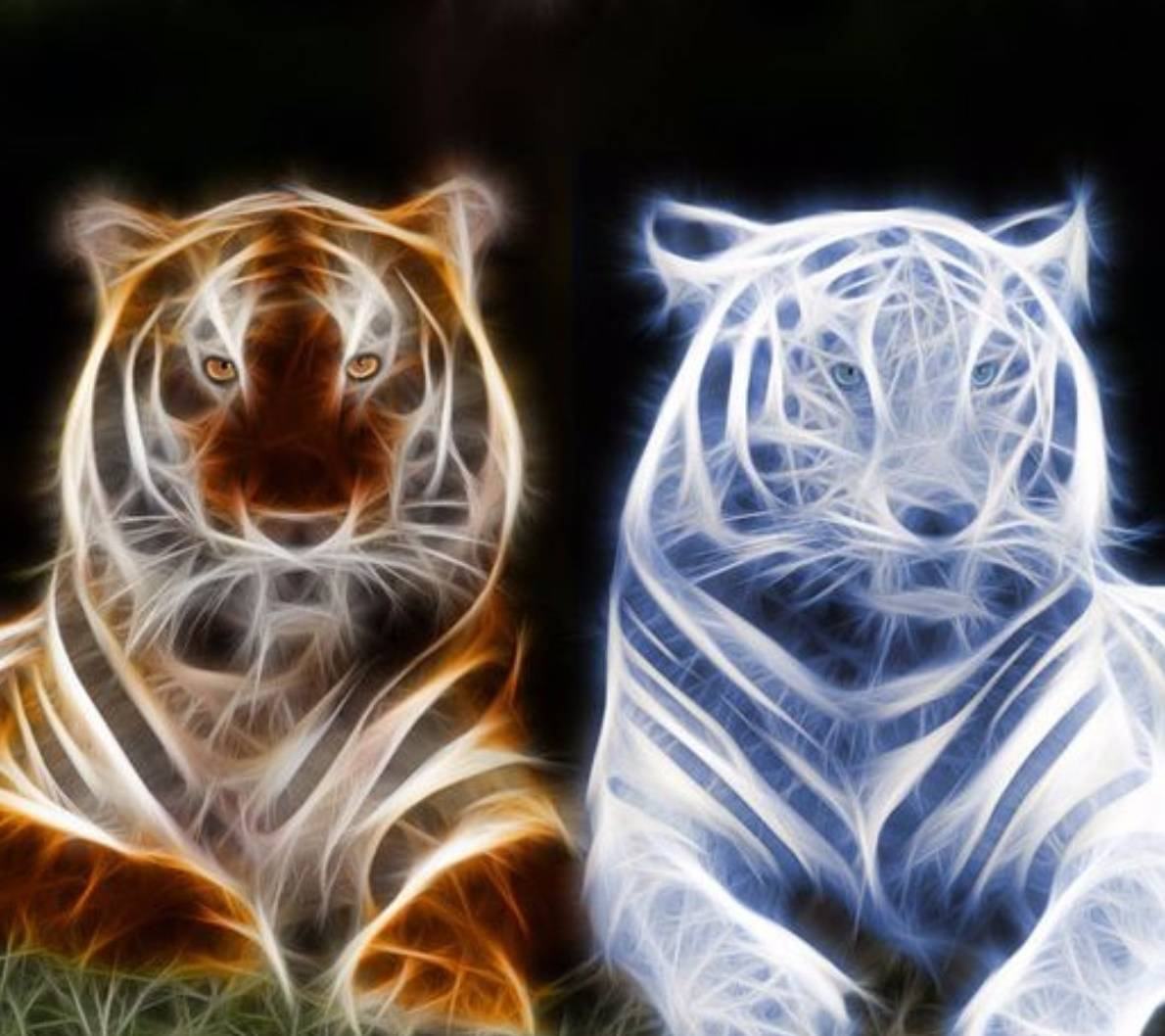 Fire And Ice Tigers Wallpaper By Backlash1102 F3 Free On Zedge
