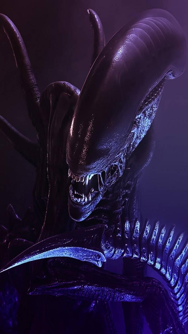 Alien Wallpaper