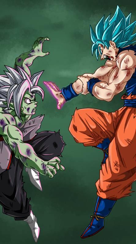 Goku hakai