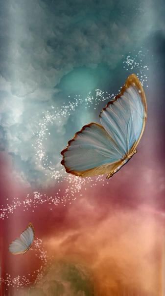 MajicalButterflies