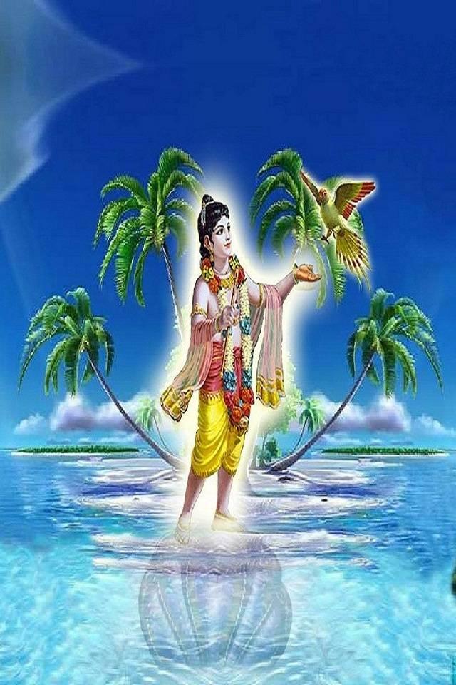 Vir104 Krishna