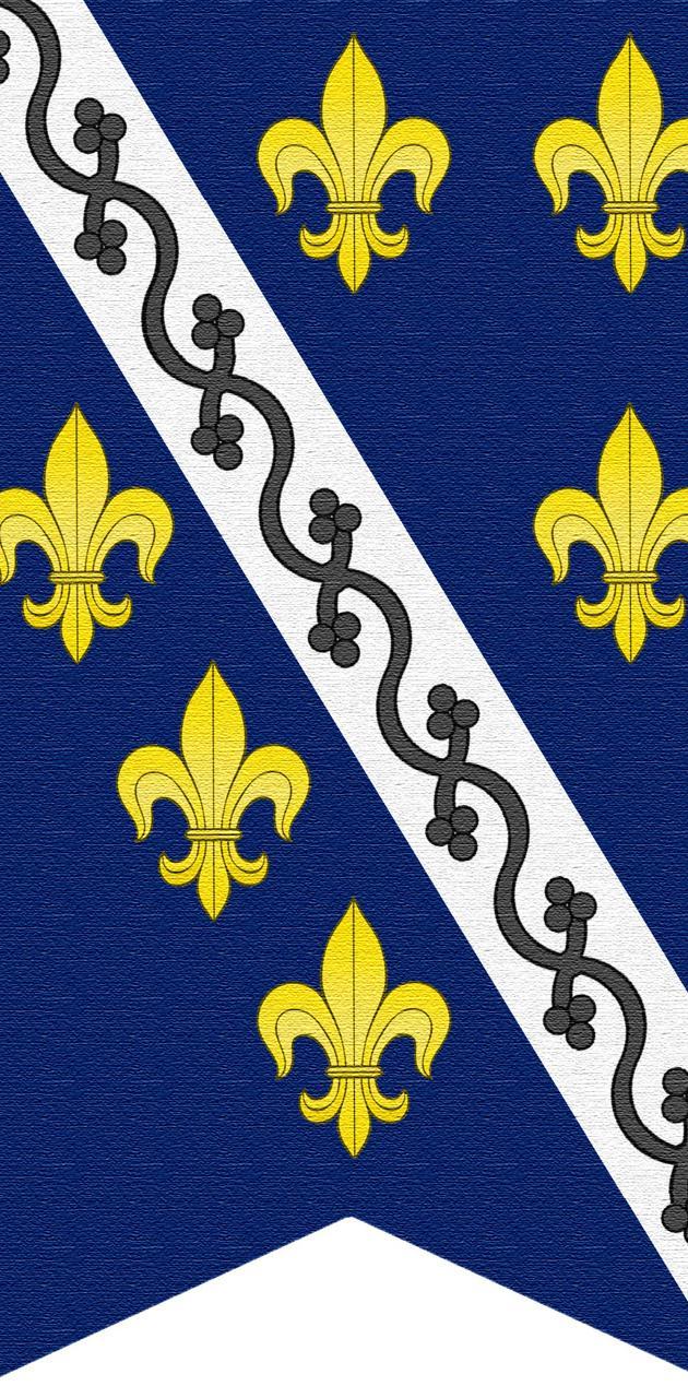 Kraljevina Bosna
