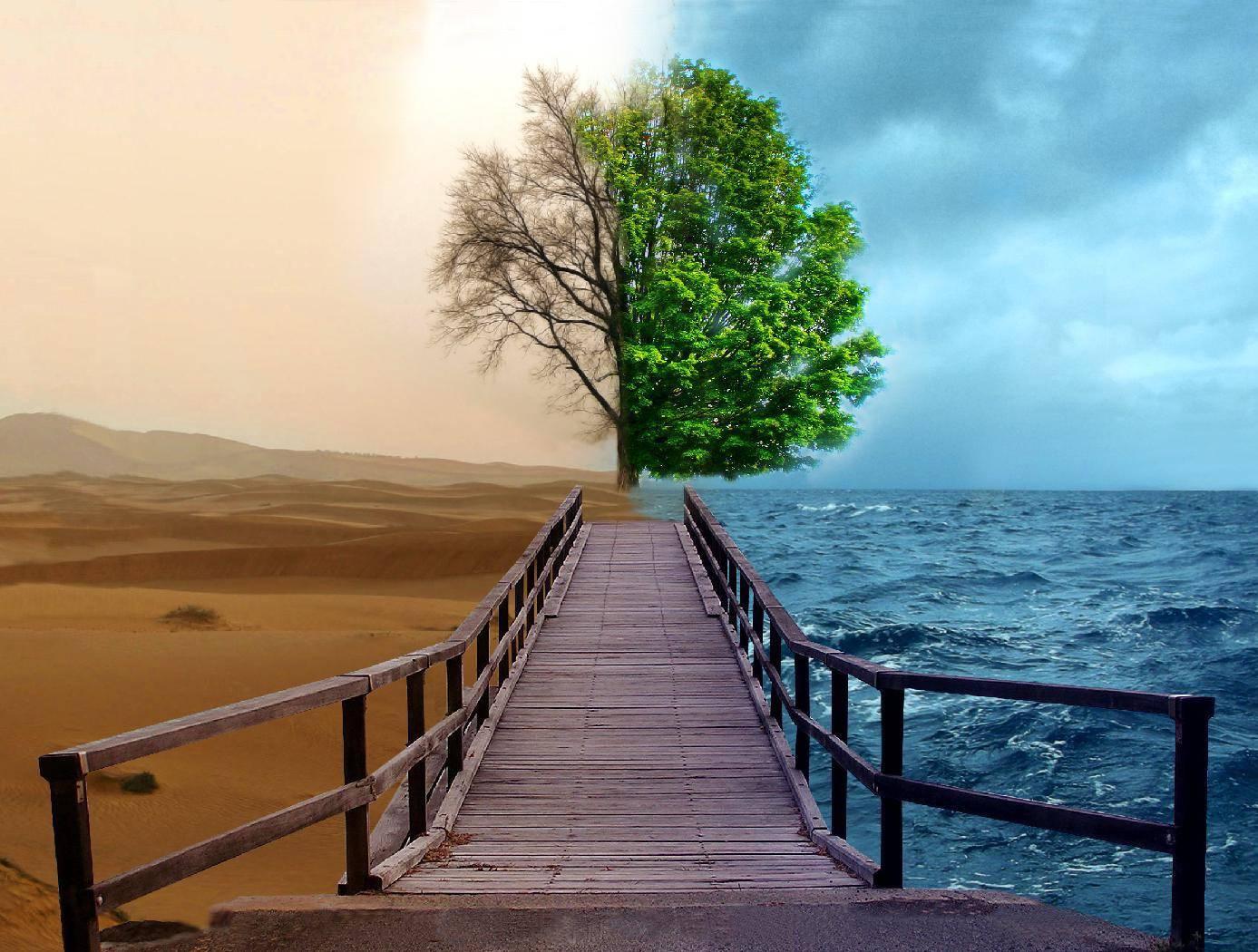 Path-bridges-ocean
