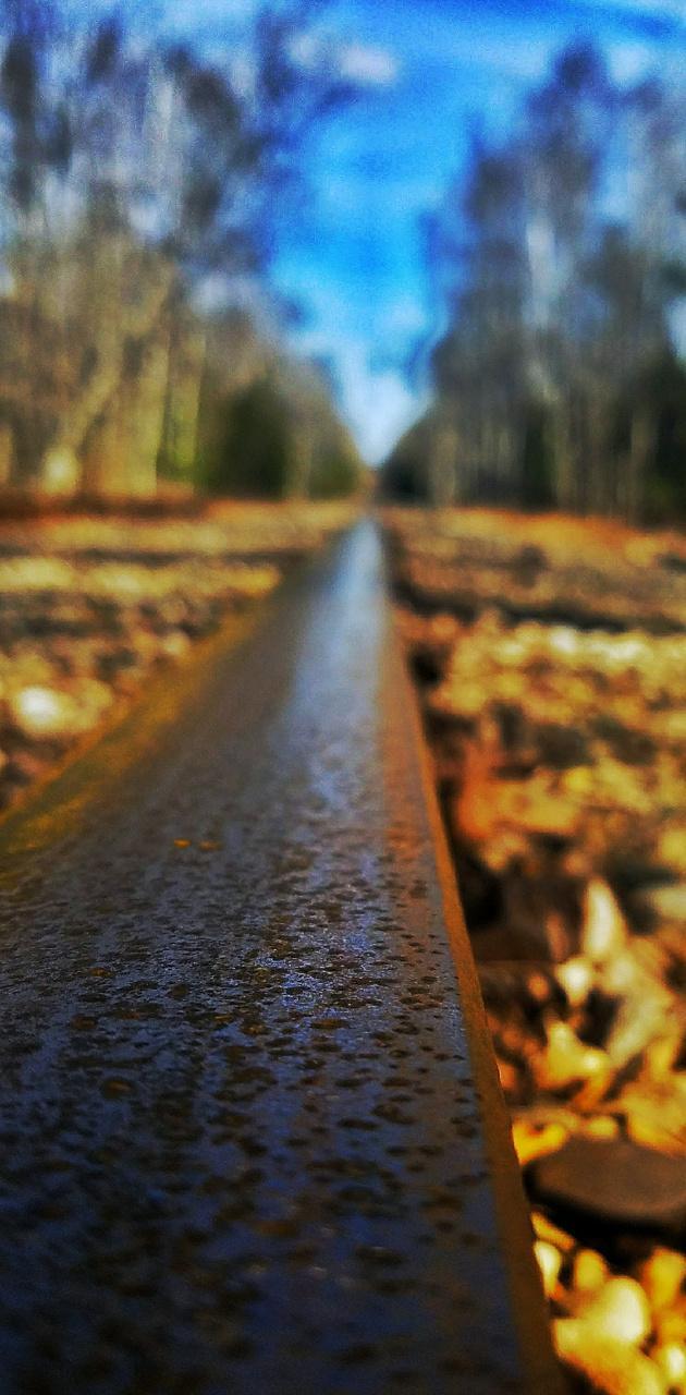 Road Tracks