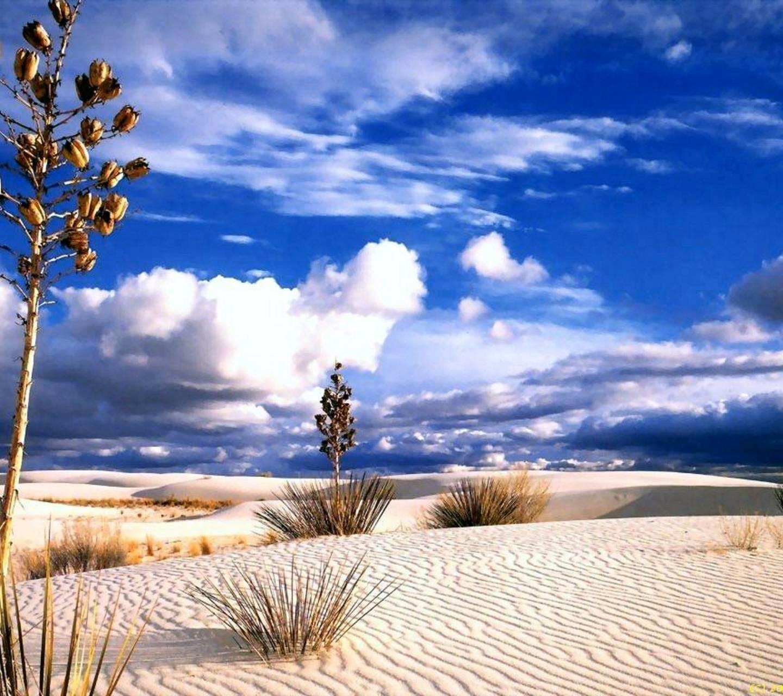 Desert bliss