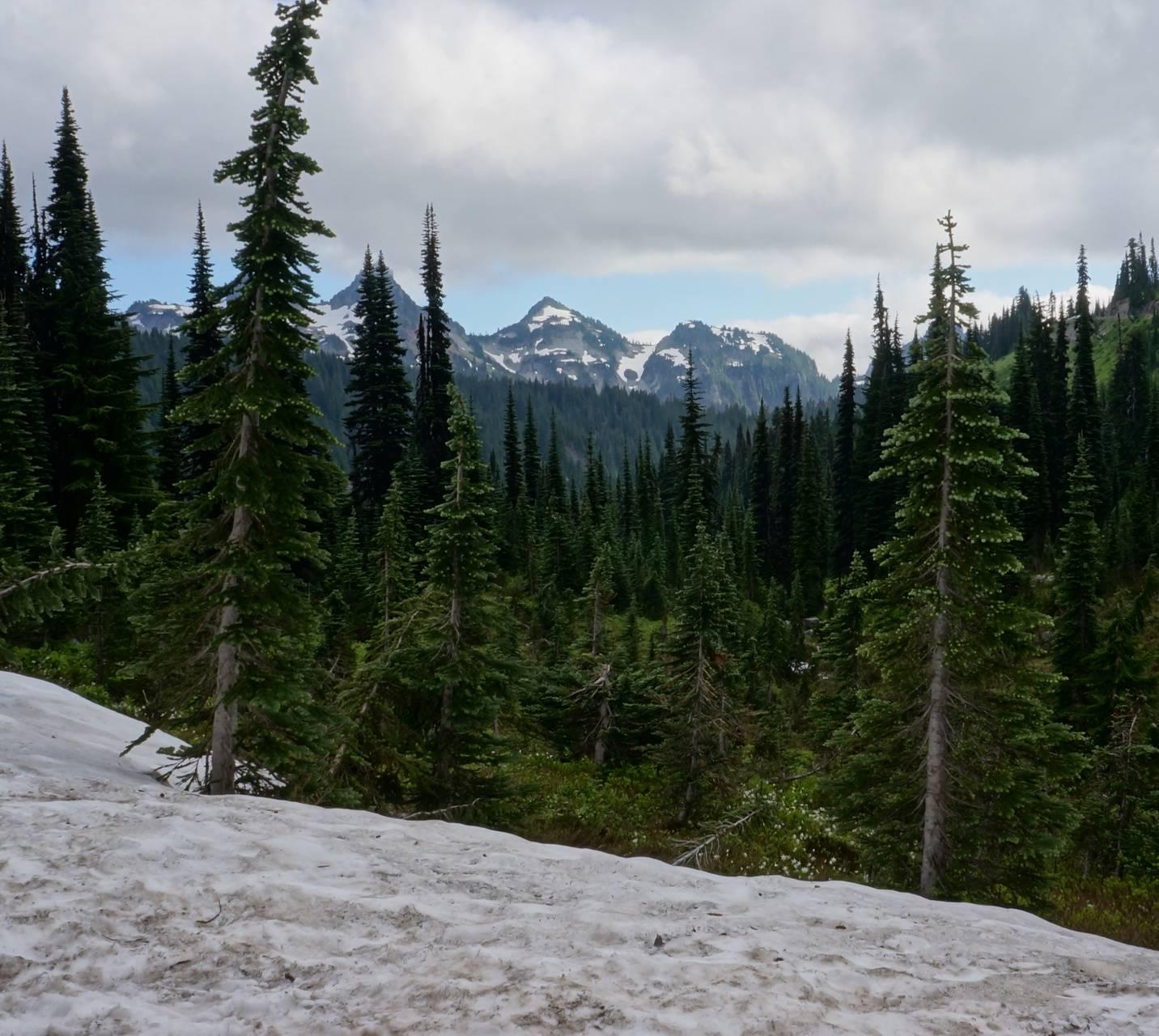 Distant Mountain