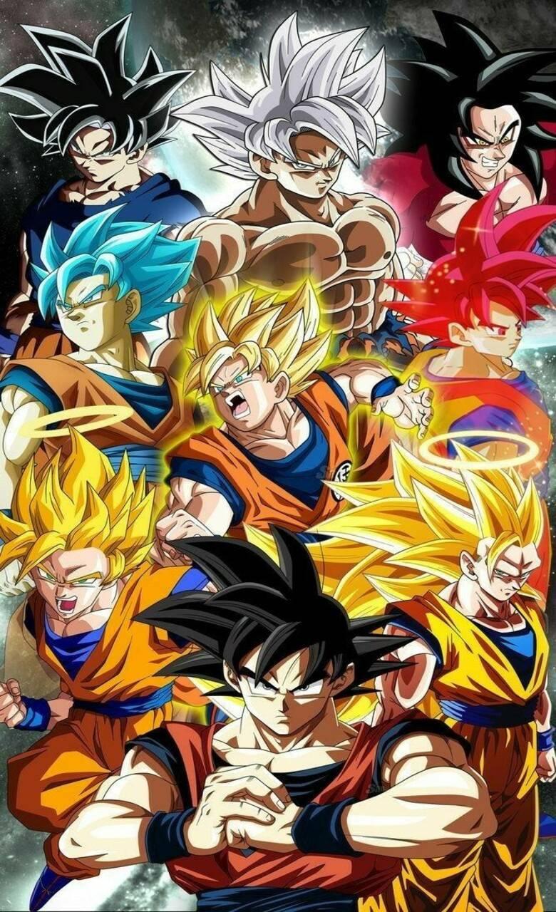 Phases of Goku