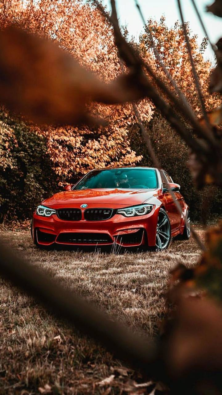 Bmw M3 Wallpaper By P3tr1t 57 Free On Zedge
