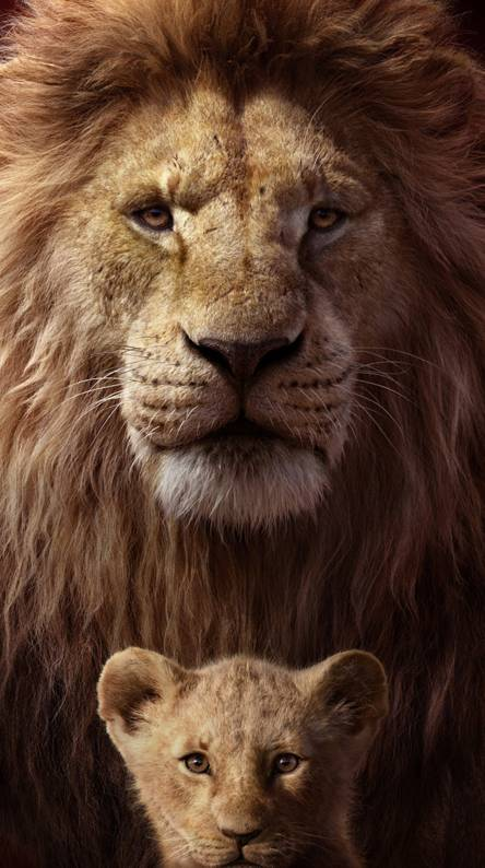 The Lion King Wallpapers Free By Zedge