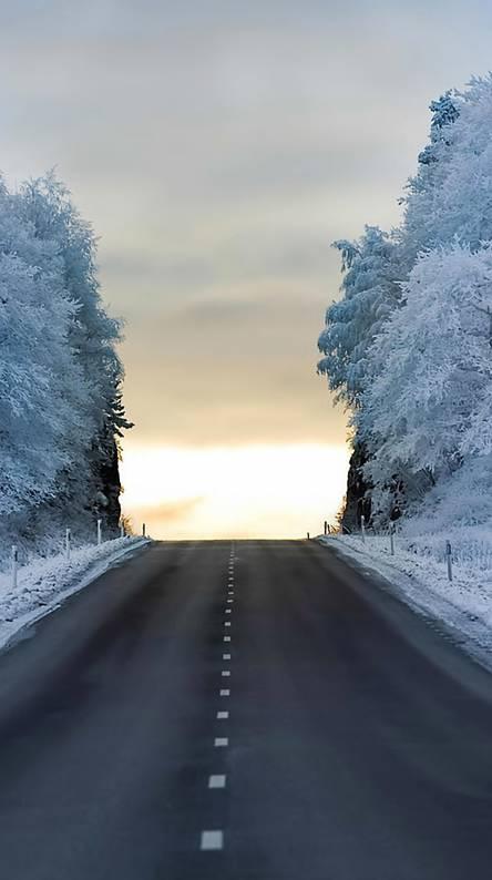 Winter Road Wallpapers