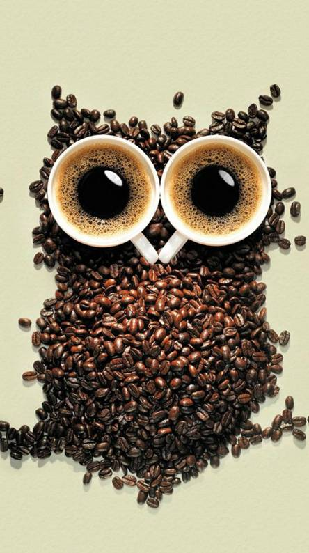 Owl Of Coffee Beans