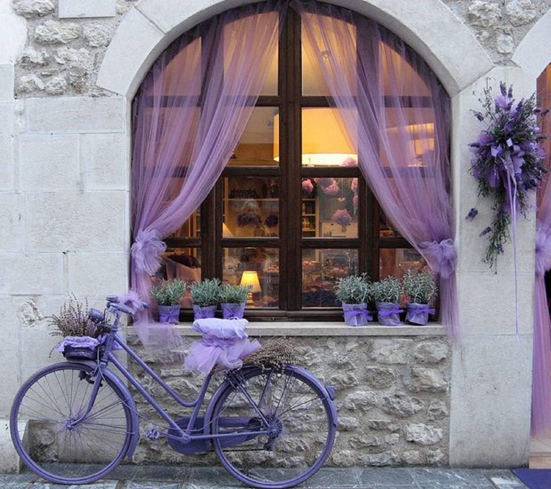 lavender cycle