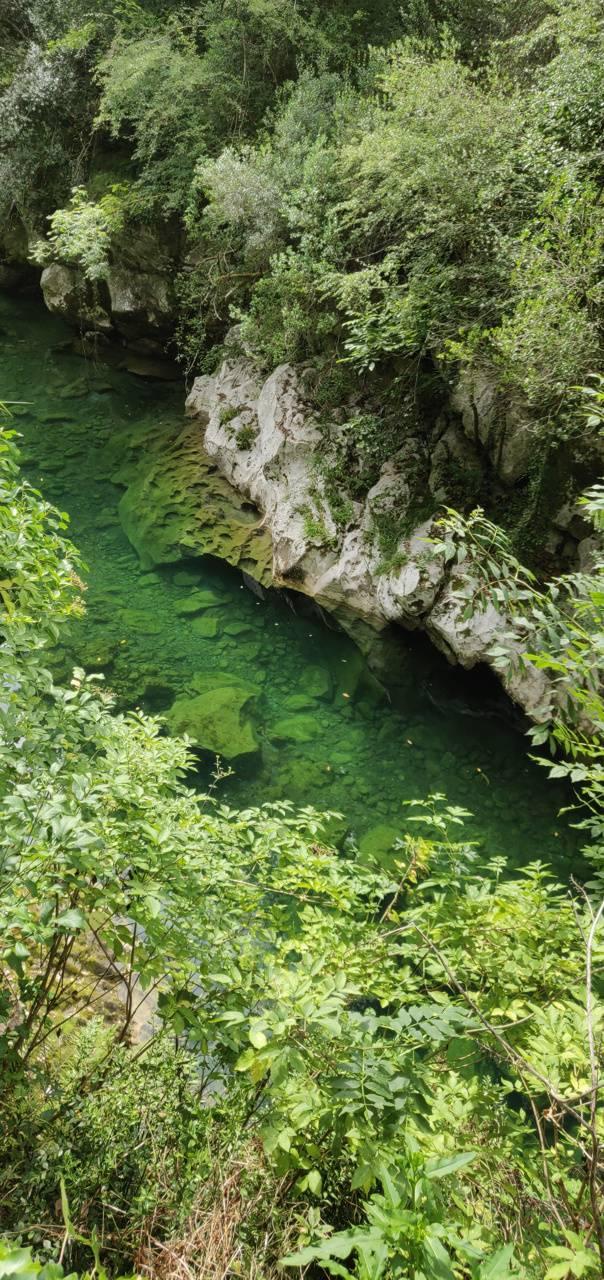 Nature asturias