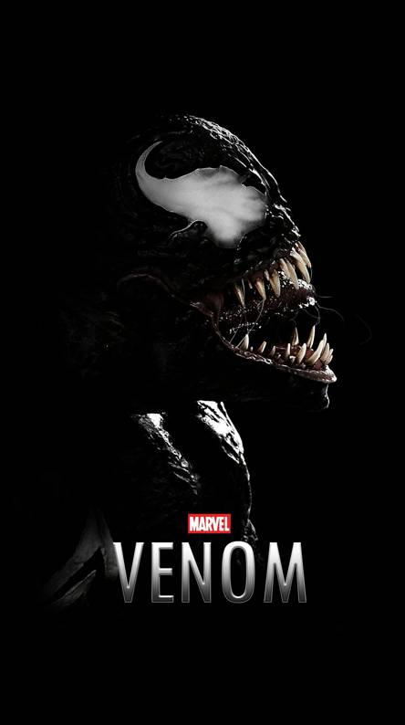 Venom Hd Wallpaper Download