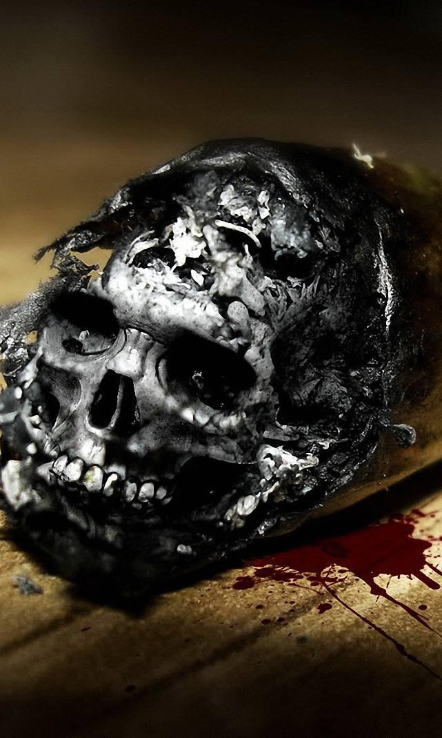 Joint Skull