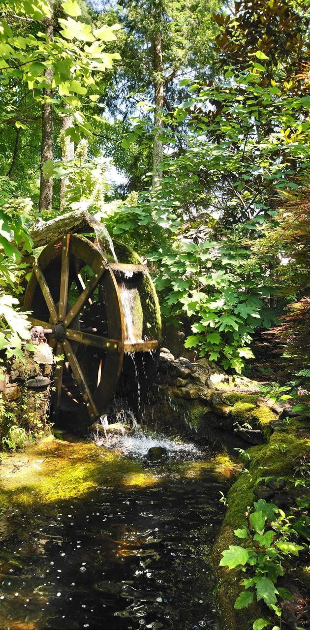 Nature watermill
