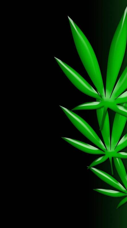 weed wallpaper for android  Weeds Wallpapers - Free by ZEDGE™