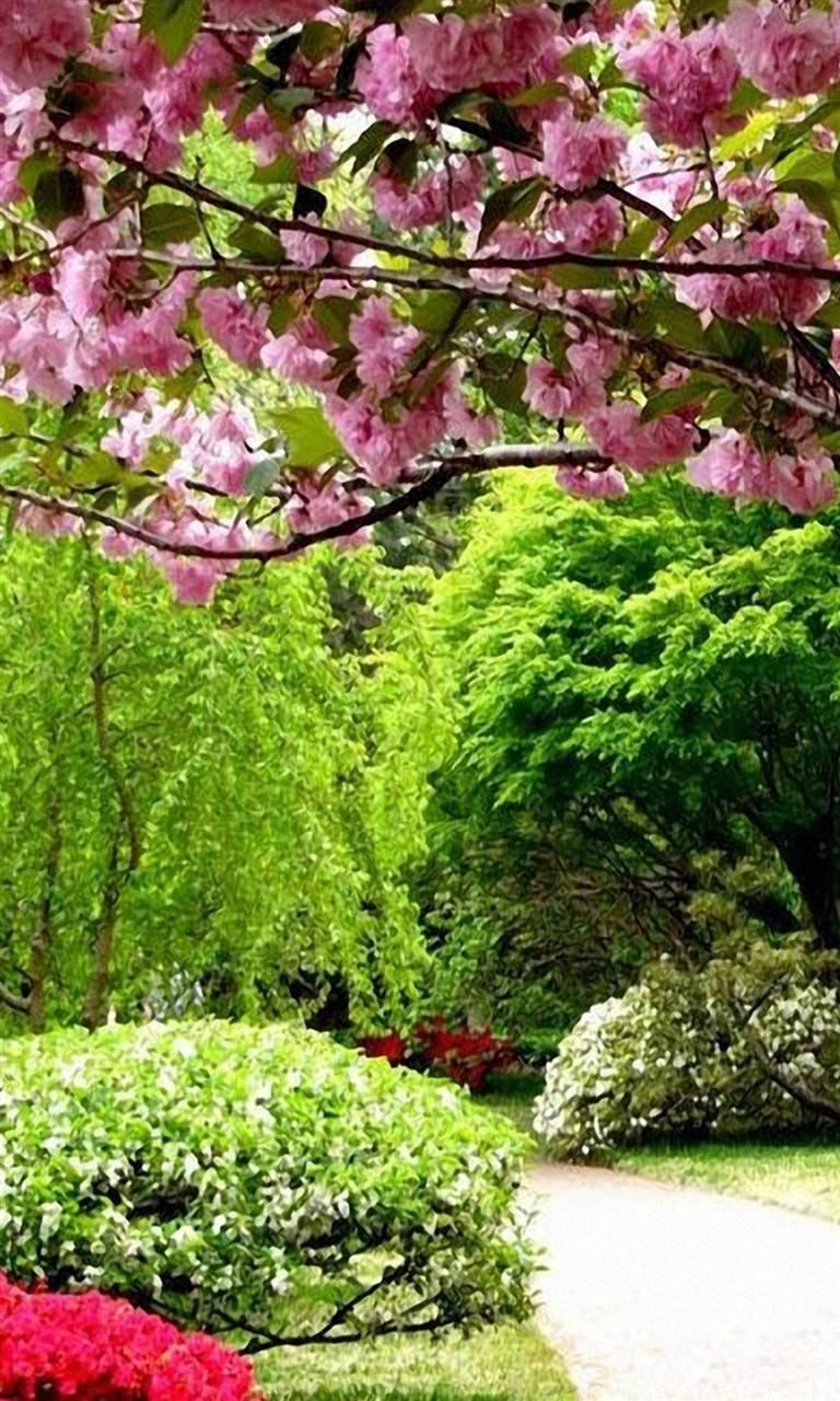 Romantic Nature