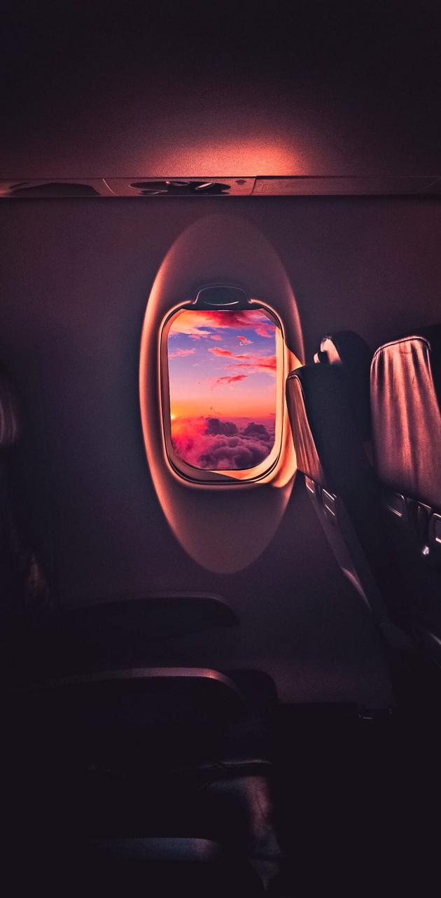 Aesthetic Flight
