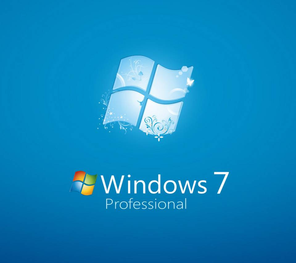 Window  Professional