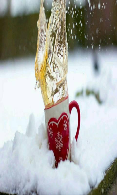 winter hd tea