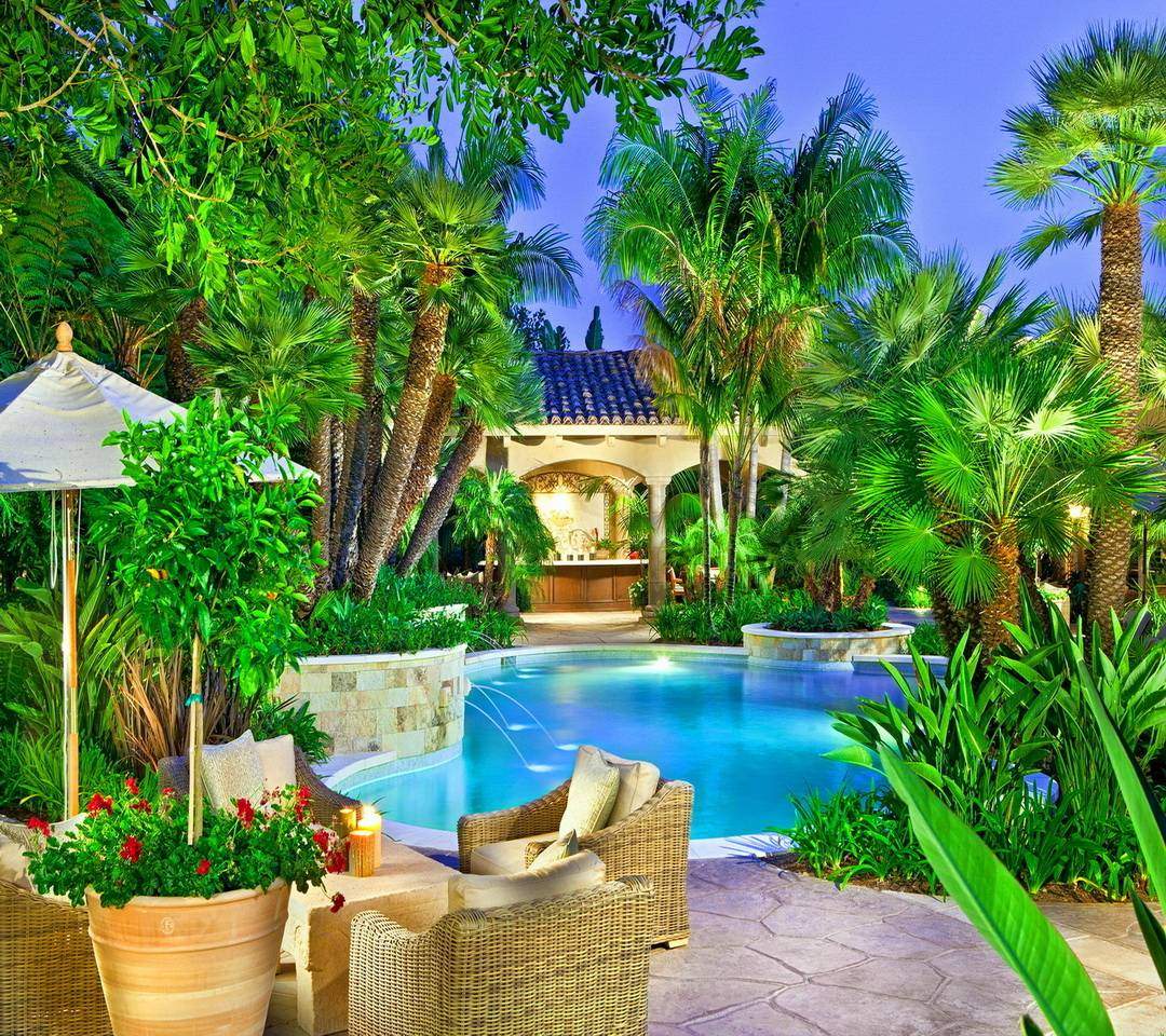 Tropical View