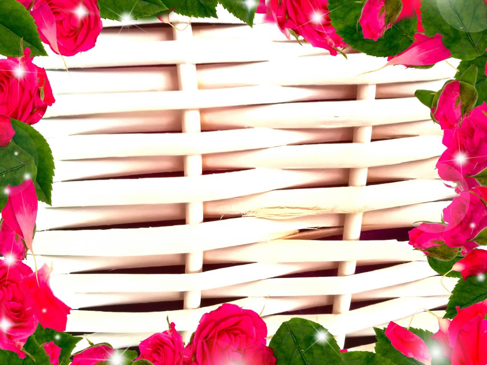 Red roses frame