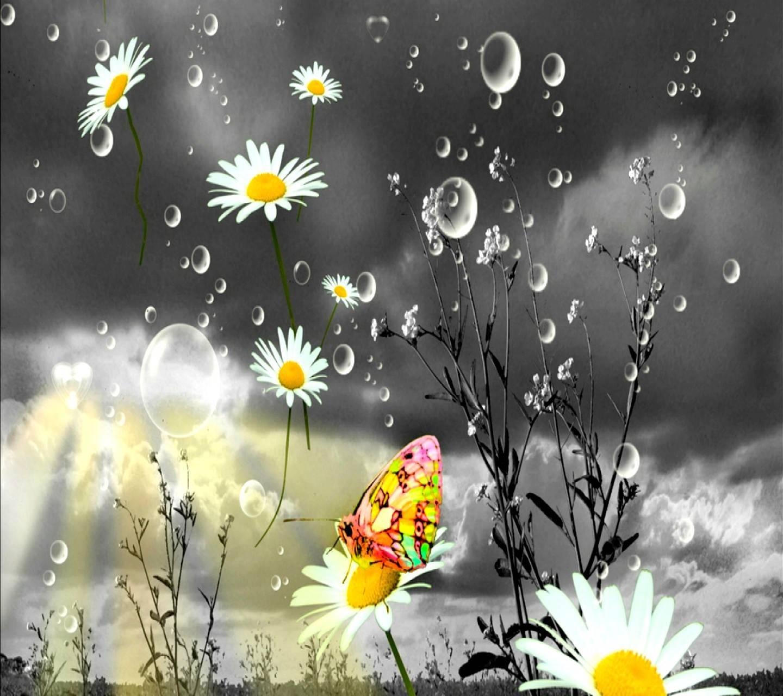 Открытки дождь и солнце, пожеланиями днем