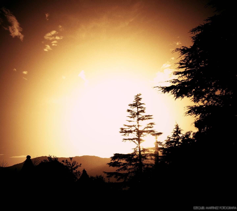 Sunrise N1