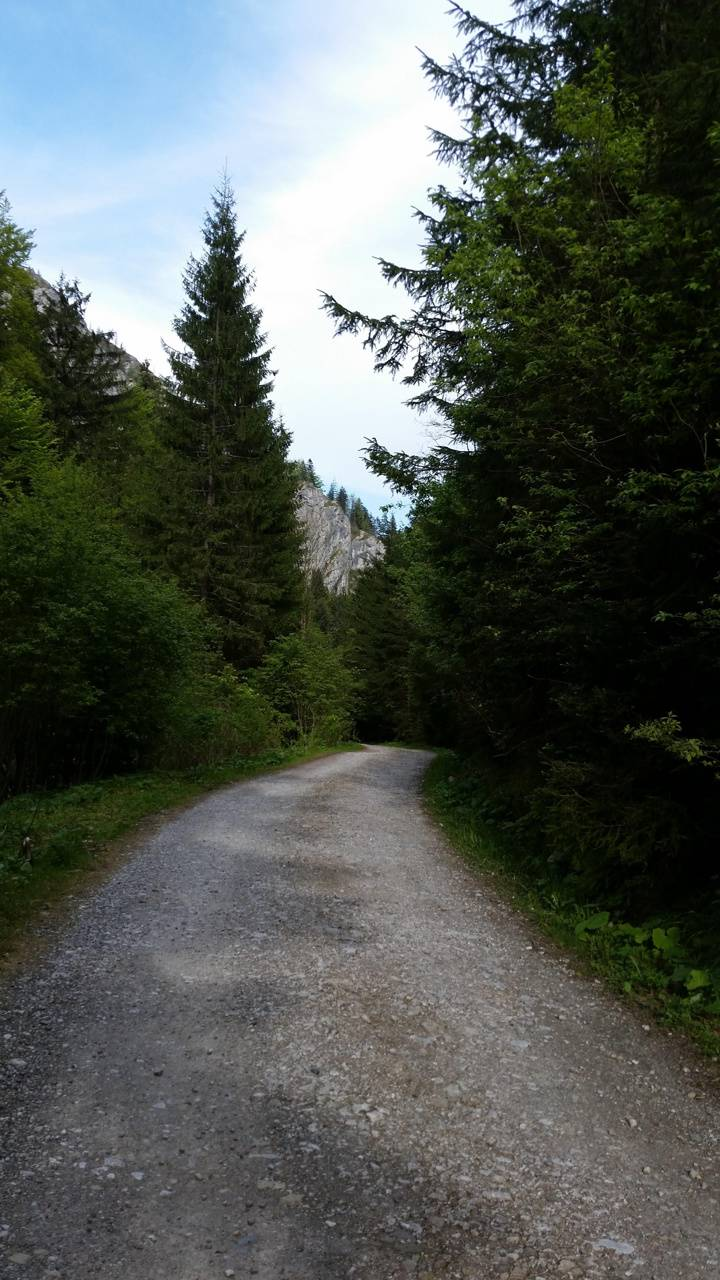 montain road