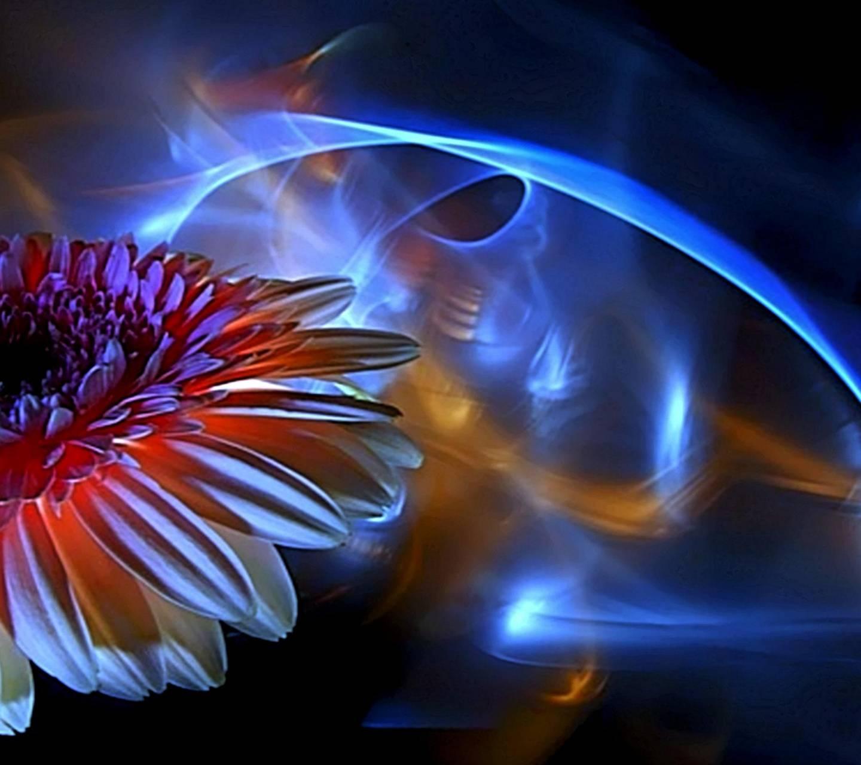 Radiant Flower