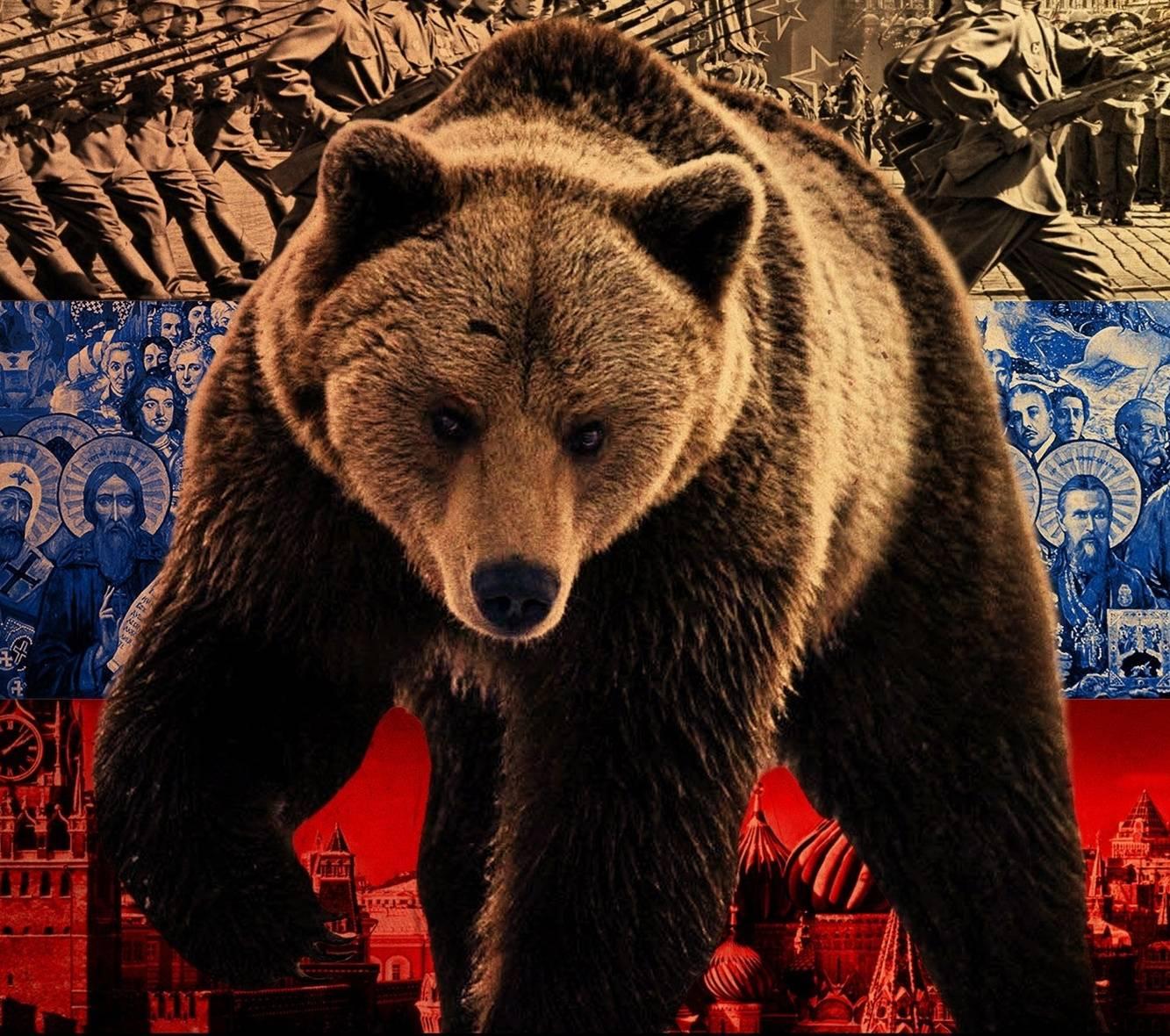 Russian Bear Wallpaper By Vvvrussianvvv D7 Free On Zedge