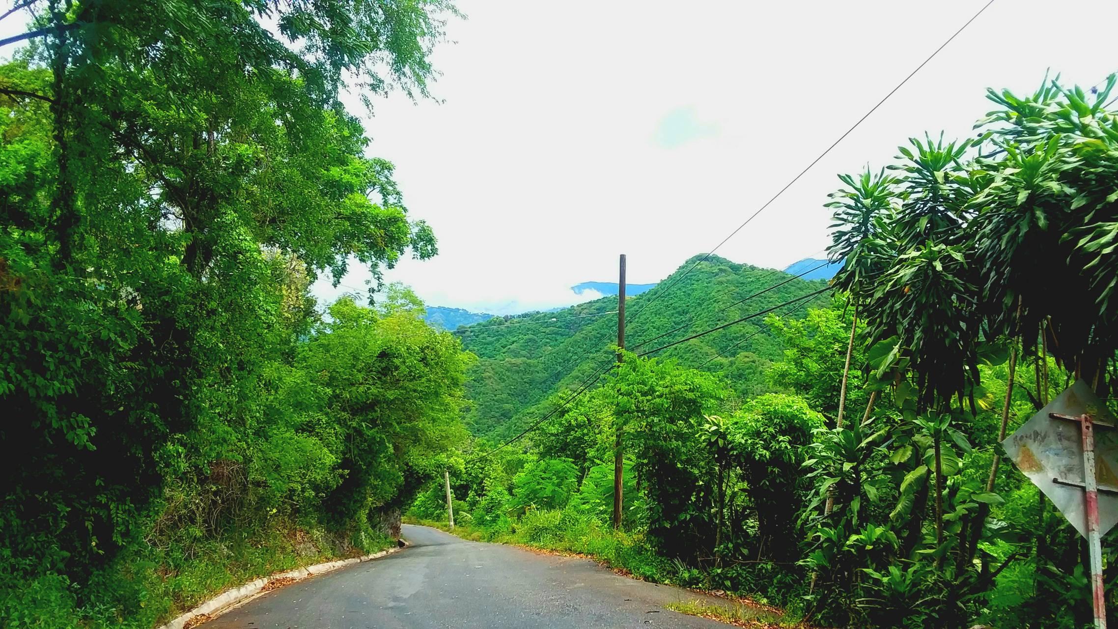 Hills JA
