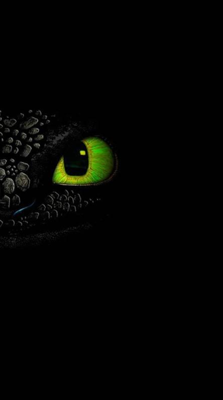 toothless dragon eye