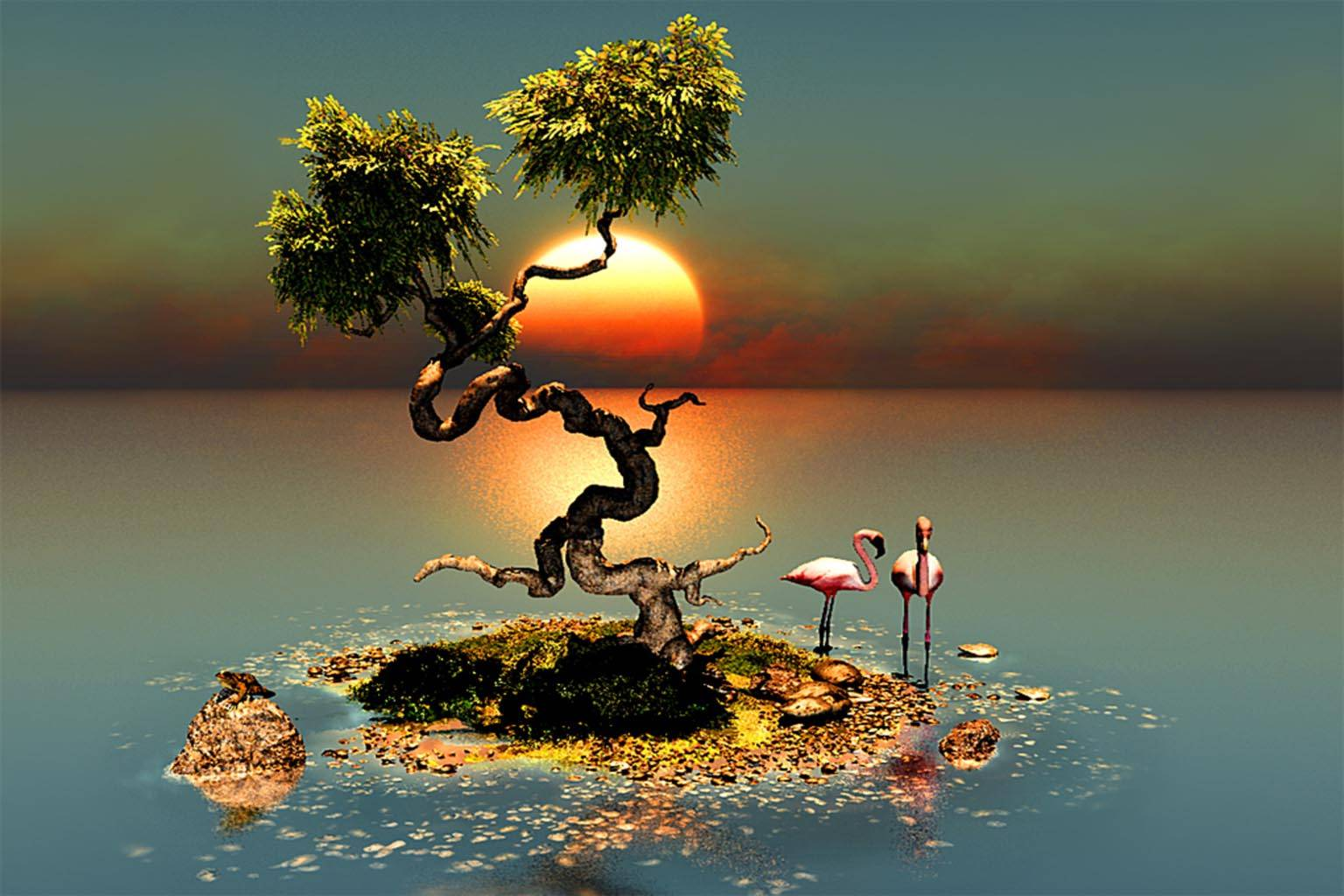 Island Sunset tree