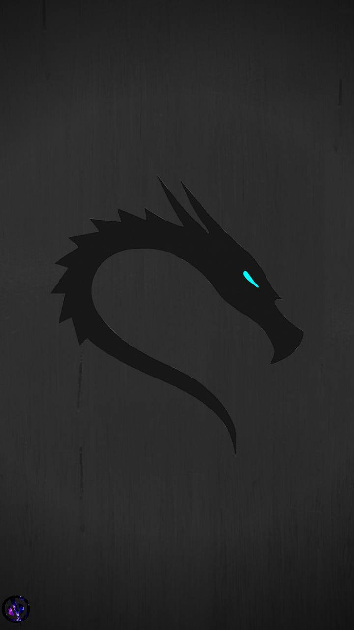 Kali Linux 2 Wallpaper By M Dine 6c Free On Zedge