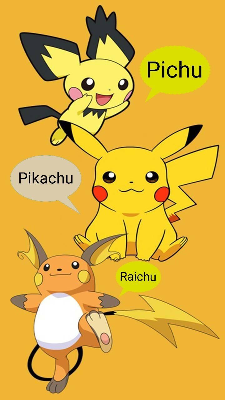 PPR Evolution
