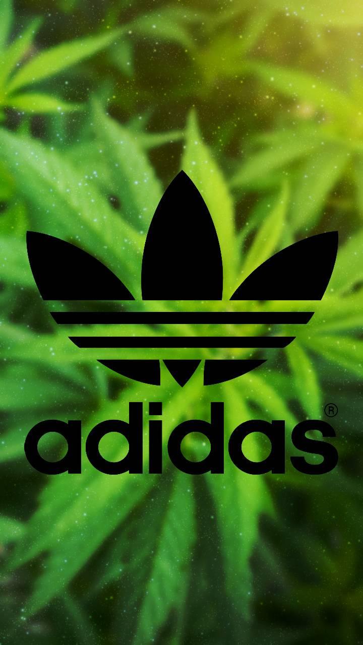 Adidas Wallpaper By Roommaaiinn 35 Free On Zedge